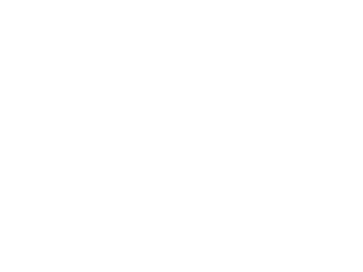 Partners: ISO 9001